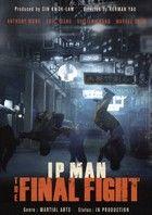 Ip Man: The Final Fight (2013) online film