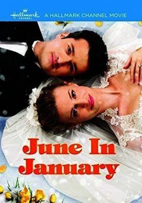 Januári esküvő (2014) online film