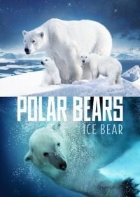 Jegesmedvék - Élet a jégmezőn (2012) online film
