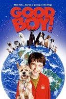 Jó fiú! (2003) online film