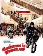 Karácsonyi csoda (2007) online film