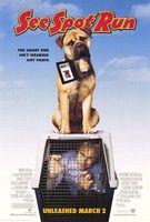 Kutyafuttában (2001) online film