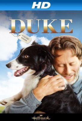 Kutyám Duke (2012) online film