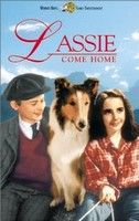 Lassie hazatér (1943) online film