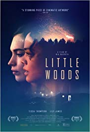 Little Woods (2018) online film