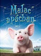 Malac a pácban (2006) online film