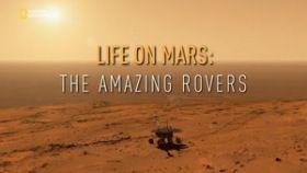 Maraton a Marson (2016) online film