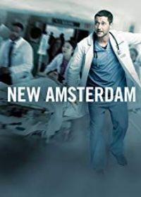 New Amsterdam  1. évad (2018) online sorozat