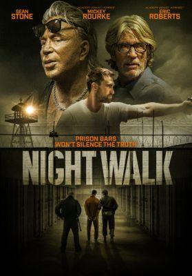Night Walk (2019) online film