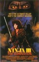 Nindzsa - A megszállt test (1984) online film