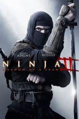 Ninja 2. - A harcos bosszúja (2013) online film