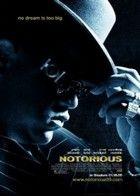 Notorious B.I.G. - A N.A.G.Y. rapper (2009) online film