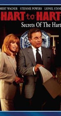 Nyomoz a páros: Egy arc a múltból (1995) online film