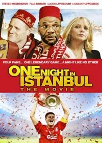 One Night in Istanbul (2014) online film