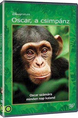 Oscar, a csimpánz (2012) online film