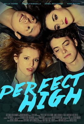 Perfect High (2015) online film