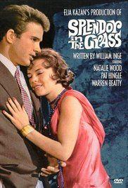 Ragyogás a fűben (1961) online film