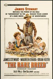 Rancho River (1966) online film