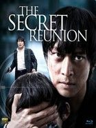 Secret Reunion (2010) online film