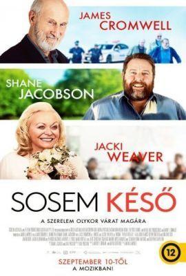 Sosem késő (2020) online film