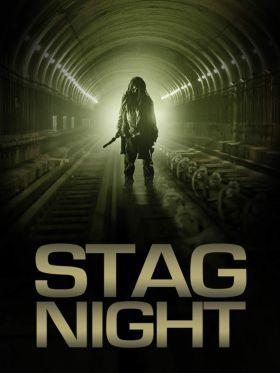 Stag Night (2008) online film