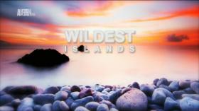 Szigetek vadvil�ga 2. �vad (2012) online sorozat