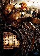 Tevepókok - Camel spiders (2012) online film