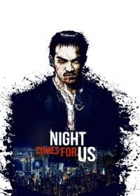 The Night Comes for Us (2018) online film