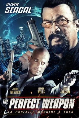 The Perfect Weapon (2016) online film