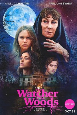 The Watcher in the Woods (2017) online film