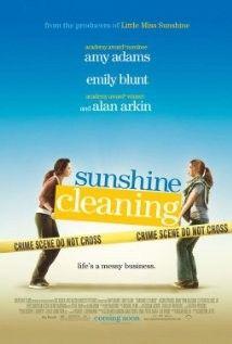 Tiszta napfény (2008) online film