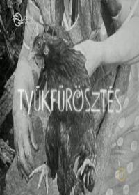 Tyúkfürösztés (1971) online film