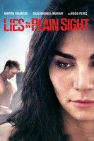 Vak igazs�g (2010) online film