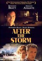 Vihar után (2001) online film
