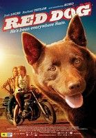 Vörös kutya - Red Dog (2011) online film