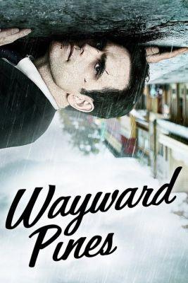 Wayward Pines 1. évad (2015) online sorozat
