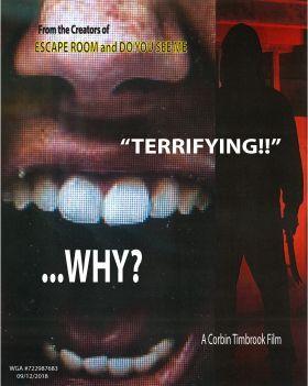 Why? (2019) online film