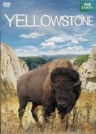 Yellowstone (2011) online film