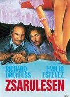 Zsarulesen (1987) online film